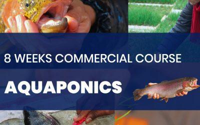 Commercial Aquaponics Course