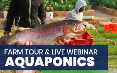 Introduction to Aquaponics 1 Day Course