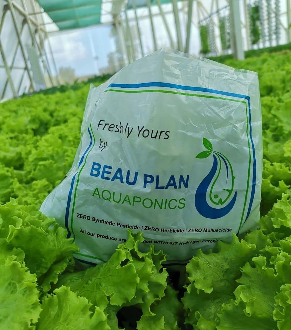 Beau Plan Aquaponics